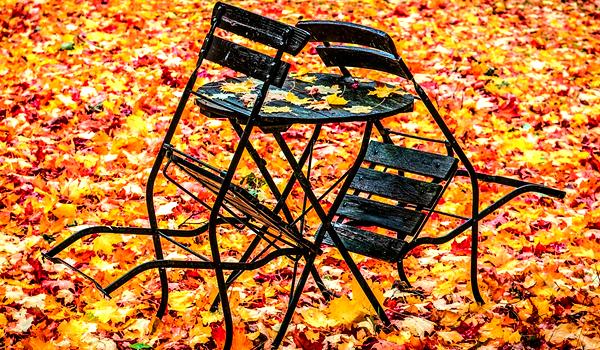 Freie Stühle zu besetzen - Praktikum