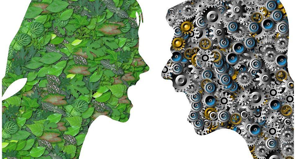 Innovationspotenzial Konflikt